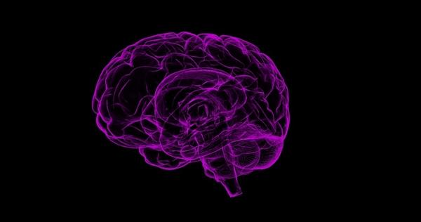 机器人要崛起:人工智能将来能够直接解读人脑电波