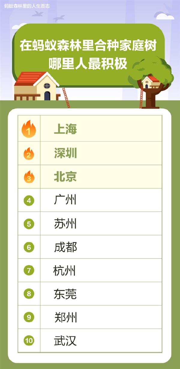 支付宝公布合种家庭树最积极城市名单:北上广深位列前四