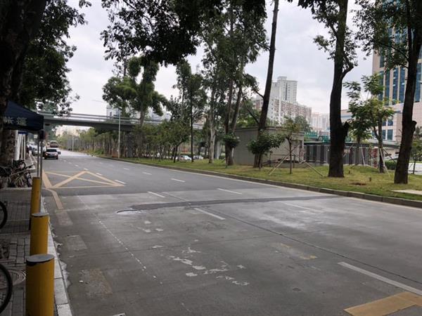 """回味广深沪春节""""慢生活"""":网络依赖症下的失落"""