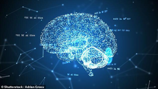 由点及面:大脑检索记忆的方式与记忆建立过程相反
