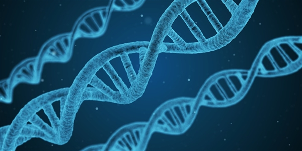 DNA化身硬盘:花费21个小时 保存5个字母