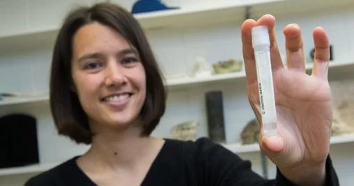 岩石中榨出的2万年前海水 除了更咸还有啥不一样?