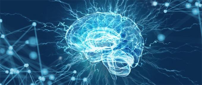 知否|人类大脑竟能生成磁铁矿?感应方向全靠它?