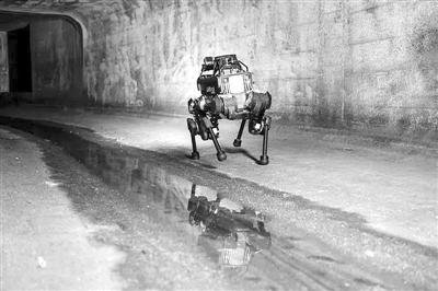 """拉开""""灵活""""人工智能时代序幕:机器人有望跨越仿真—现实鸿沟"""