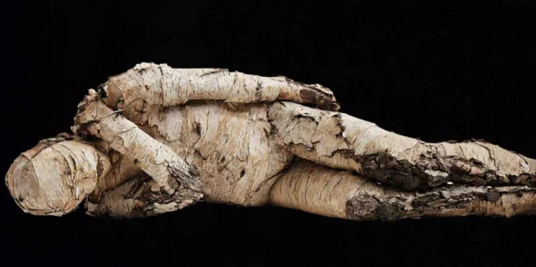 不只是现代杀手!4000多年前心脏病就造成人类死亡