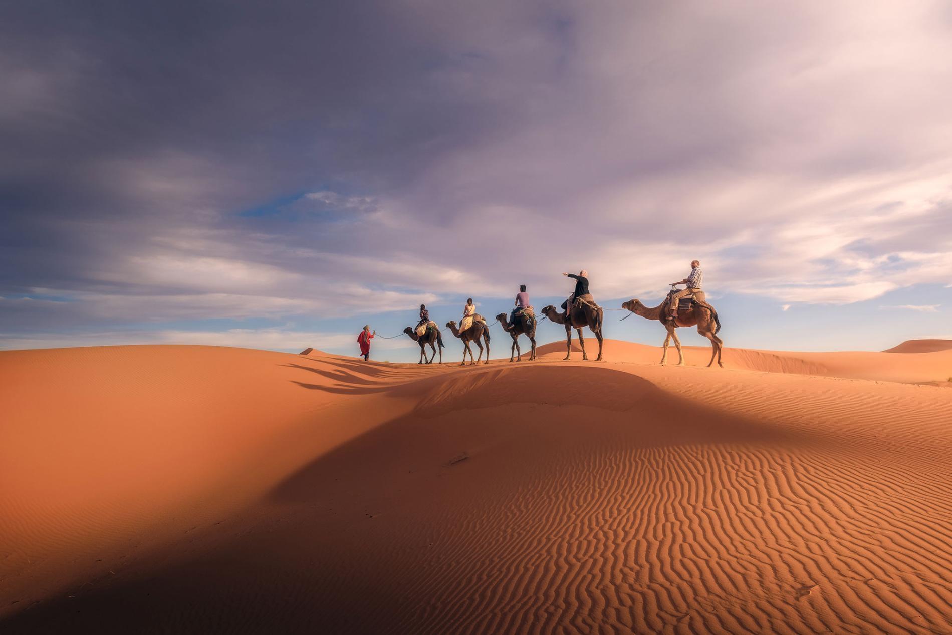 沙漠里为什么白天热,但晚上却很冷?